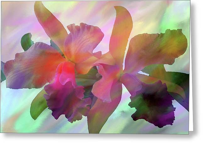 Easter Orchids Greeting Card by Don Wright