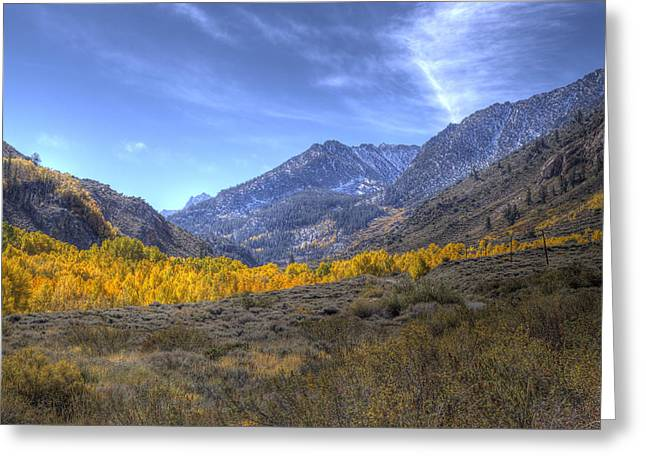 Greeting Card featuring the photograph Eastern Sierras In Fall by Michele Cornelius