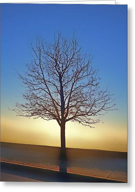 Eden Tree Greeting Card