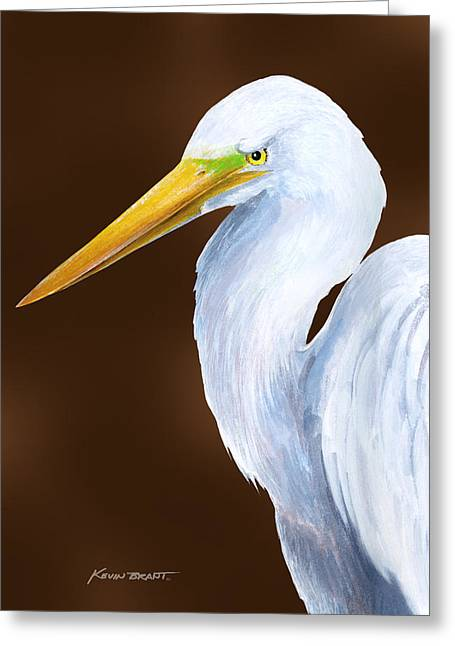 Egret Head Study Greeting Card by Kevin Brant
