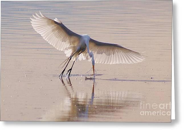 Egret Hunting Greeting Card