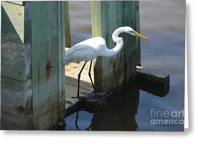 Egret On Rice Trunk Greeting Card