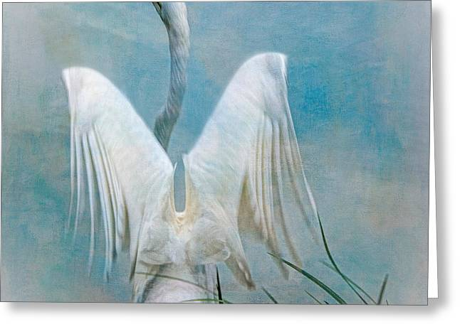 Egret Preparing To Launch Greeting Card by Chris Lord