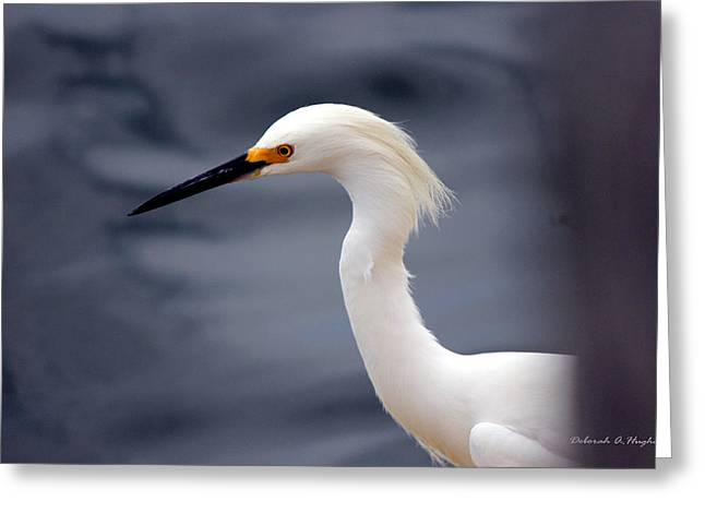 Egret Soft Greeting Card