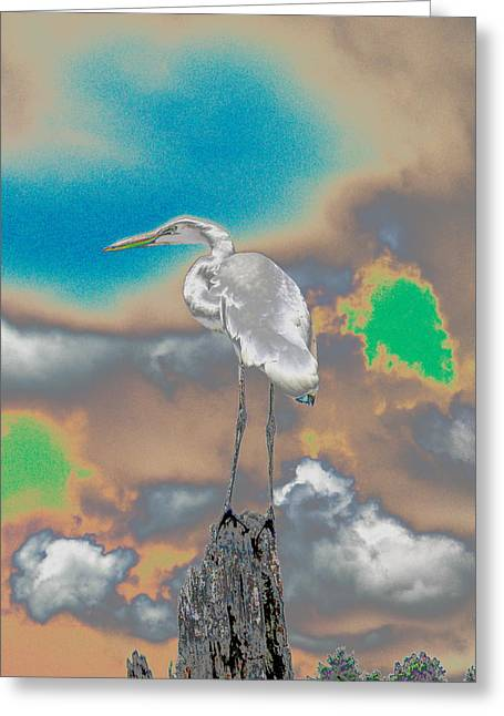Egrit Greeting Card by Perry Conley