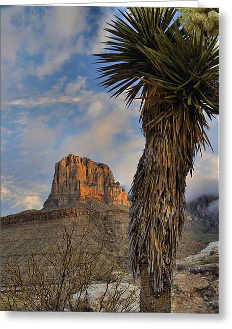 El Capitan At Sunrise 2 Greeting Card