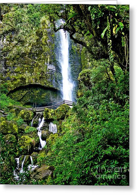 El Chorro Waterfall At Giron II Greeting Card by Al Bourassa