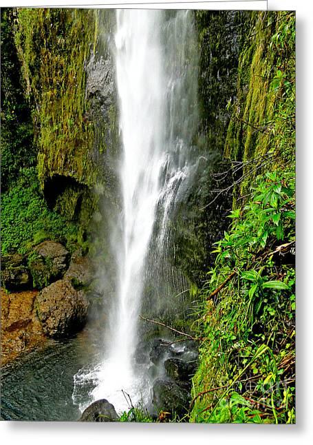 El Chorro Waterfall Of Giron Iv Greeting Card by Al Bourassa