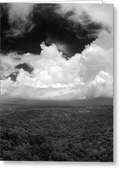 El Yunque National Forest Greeting Card by Julie VanDore