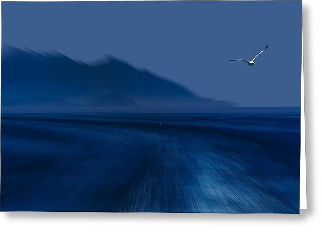 Greeting Card featuring the photograph Elba Island - Flying Away - Ph Enrico Pelos by Enrico Pelos