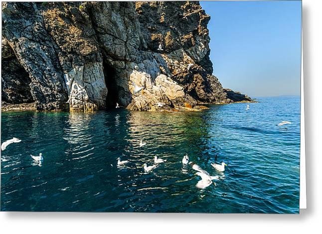 Elba Island - Seagulls Coast 3 - - Costa Dei Gabbiani 3 - Ph Enrico Pelos Greeting Card