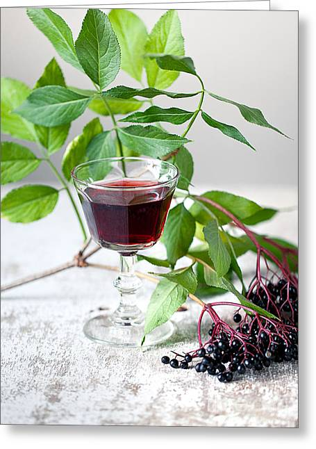 Elderberries 05 Greeting Card by Nailia Schwarz