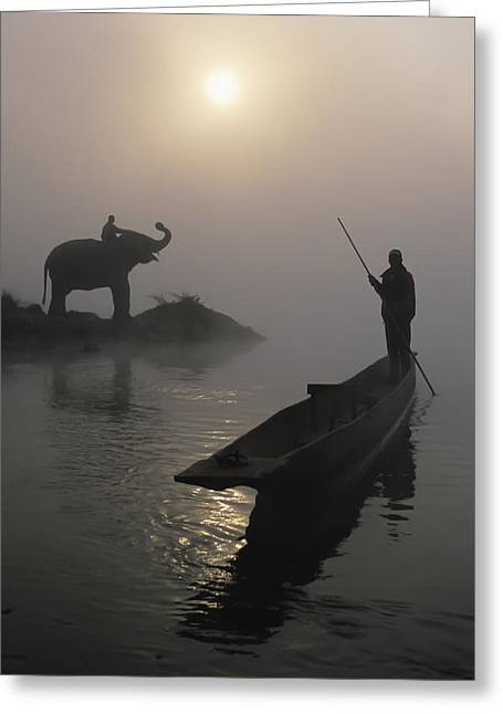 Elephant And Canoe Greeting Card by Sean White