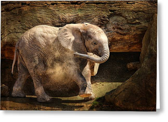 Elephant Calf Greeting Card by Larry Marshall