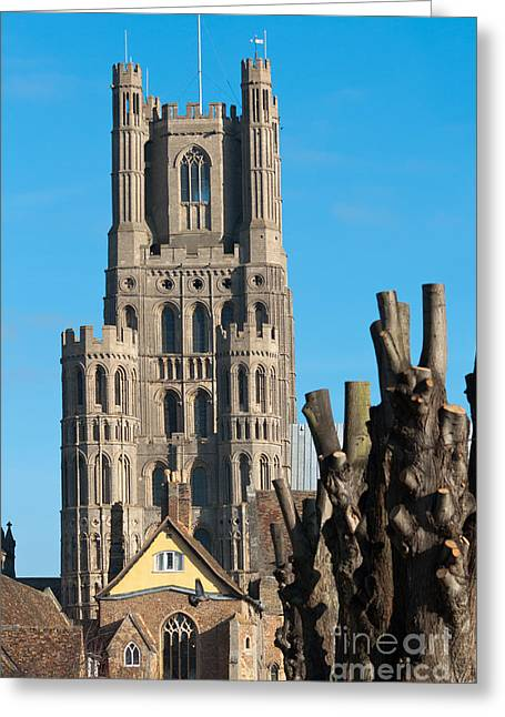 Greeting Card featuring the photograph Ely Cathedral by Andrew  Michael