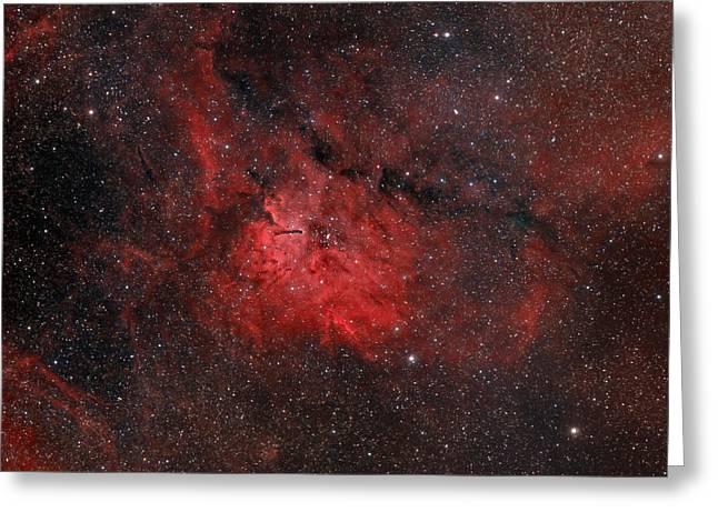 Emission Nebula Ngc 6820 Greeting Card by Rolf Geissinger
