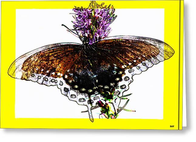 Enchanted Wings Card Greeting Card by Debra     Vatalaro