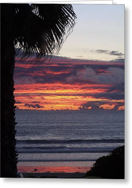 Encinitas Sunset Greeting Card by Christine Drake