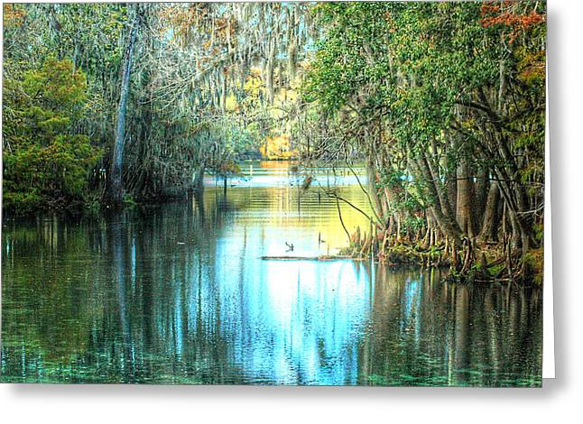 Entrance To Swanee Greeting Card by Ronald T Williams