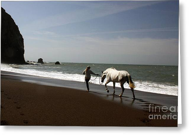 Equestrian Surf Greeting Card by Juan Romagosa