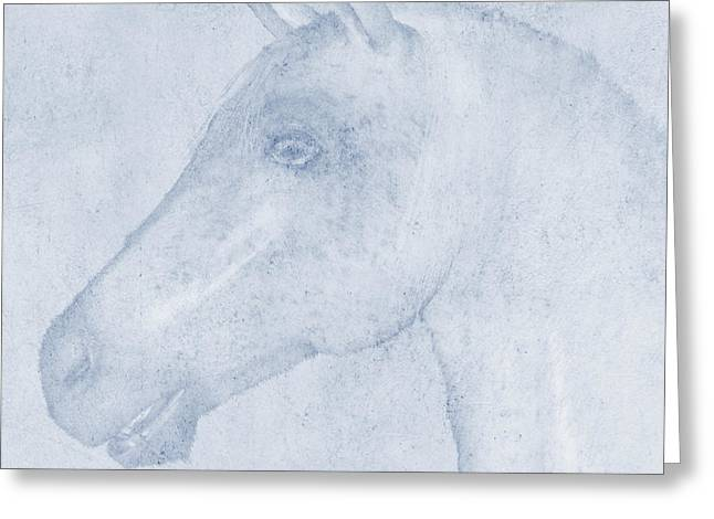 Equus Greeting Card by John Edwards
