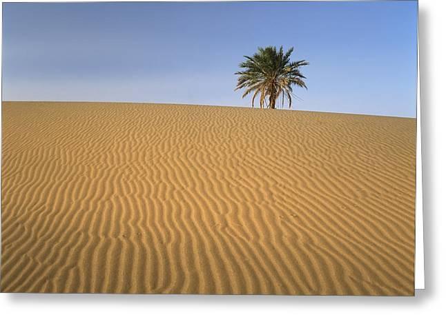Erg Chebbi, Merzouga, Morocco Greeting Card