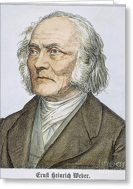 Ernst Heinrich Weber Greeting Card by Granger