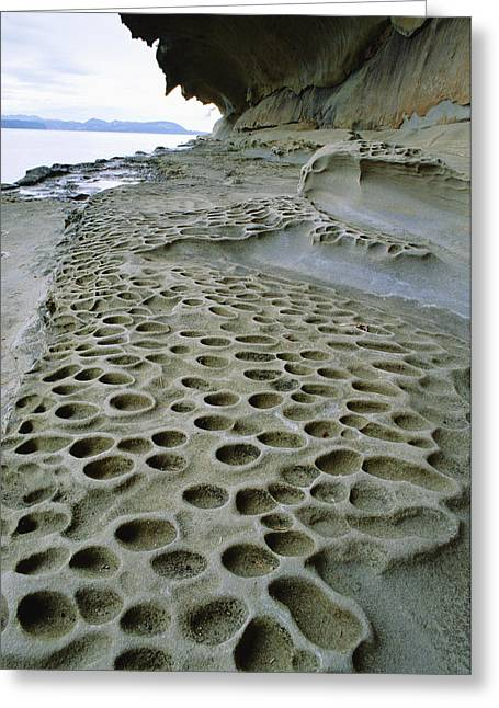 Eroded And Pitted Rock Greeting Card by David Nunuk