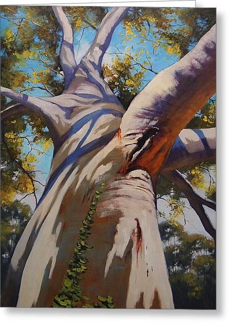 Eucalyptus Tree Portrait Greeting Card by Graham Gercken