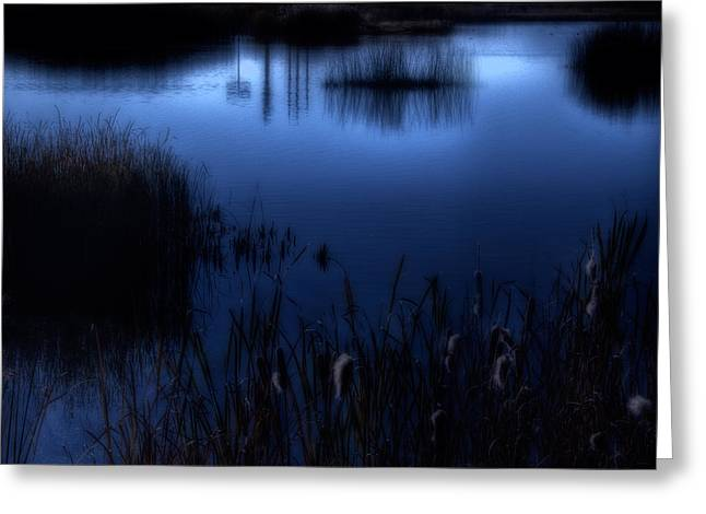 Evening At The Duck Pond Greeting Card by Utah Images