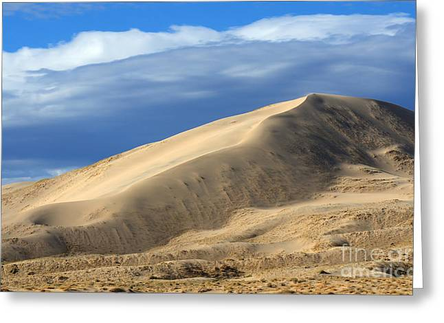 Evening At The Kelso Dunes Greeting Card by Bob Christopher