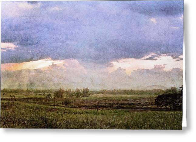 Evening Field Greeting Card by Skip Nall