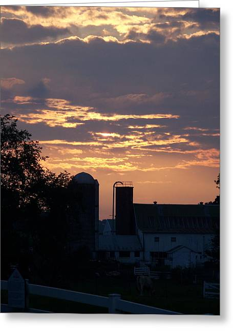 Greeting Card featuring the photograph Evening On The Farm by Robin Regan