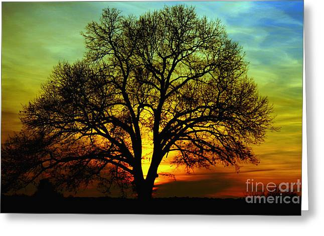 Evening Palette Greeting Card by Benanne Stiens