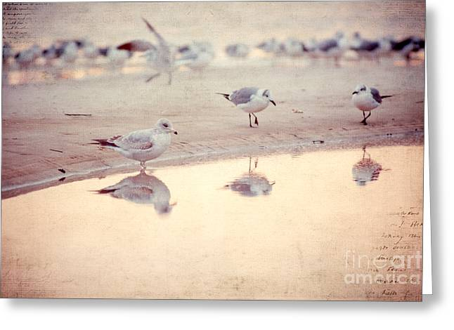 Evening Reflections Greeting Card by Joan McCool