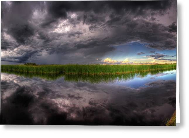 Everglades Reflection Greeting Card by Nick  Shirghio