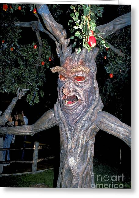 Evil Tree In Oz Greeting Card by Carl Purcell