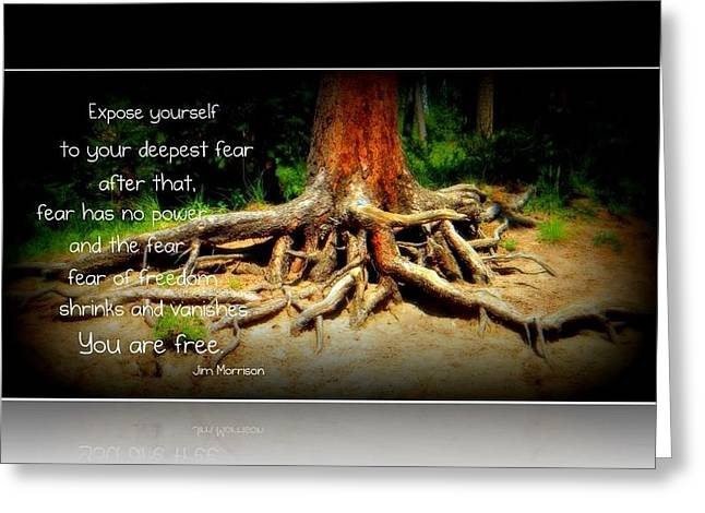 Greeting Card featuring the photograph Expose Yourself by Michelle Frizzell-Thompson