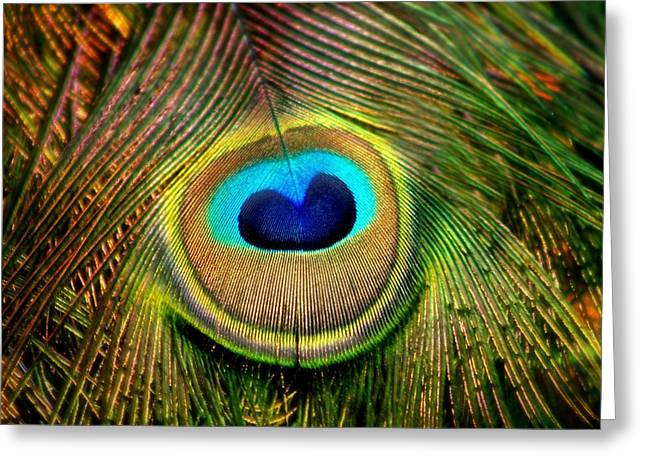 Eye Of The Peacock Feather Greeting Card