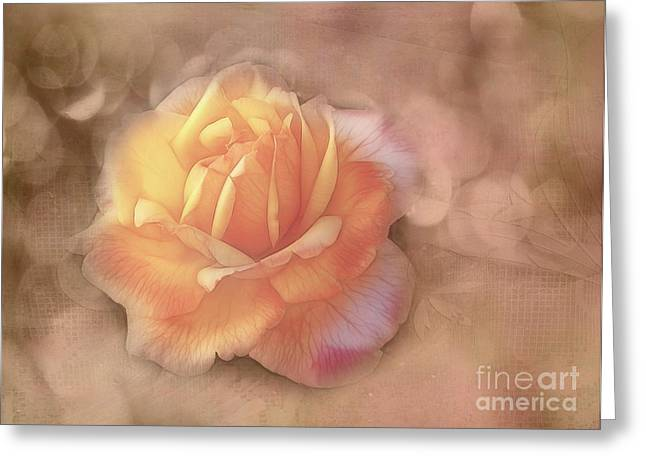 Faded Memories Greeting Card by Judi Bagwell
