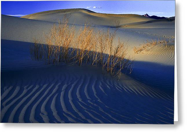 Fading Light Death Valley Greeting Card