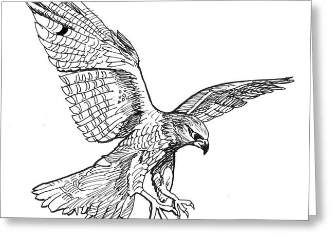 Falcon Greeting Card