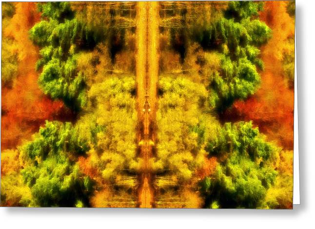 Greeting Card featuring the photograph Fall Abstract by Meirion Matthias