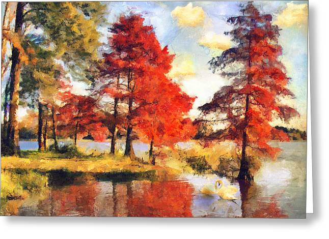 Fall At Swan Lake Greeting Card by Jai Johnson