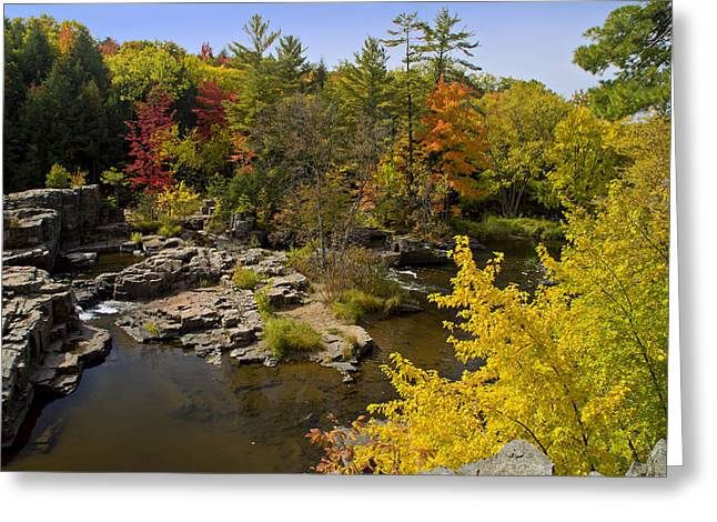 Greeting Card featuring the photograph Fall At The Eau Claire Dells by Judy  Johnson