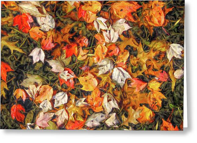 Fall Autumn Leaves On Water Greeting Card