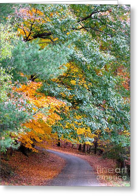 Fall Colored Country Road Greeting Card by Joan McArthur