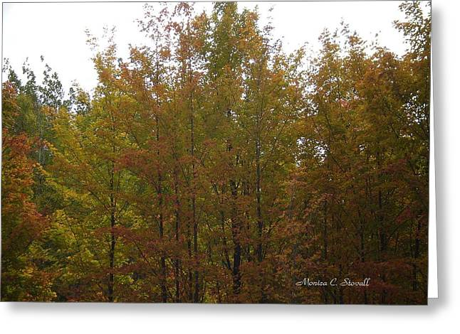Fall Colors Colection - Michigan Greeting Card