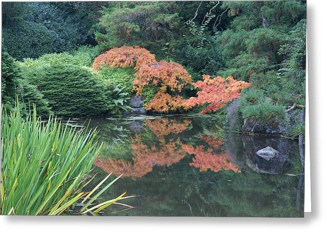 Greeting Card featuring the photograph Fall Colors by Jerry Cahill