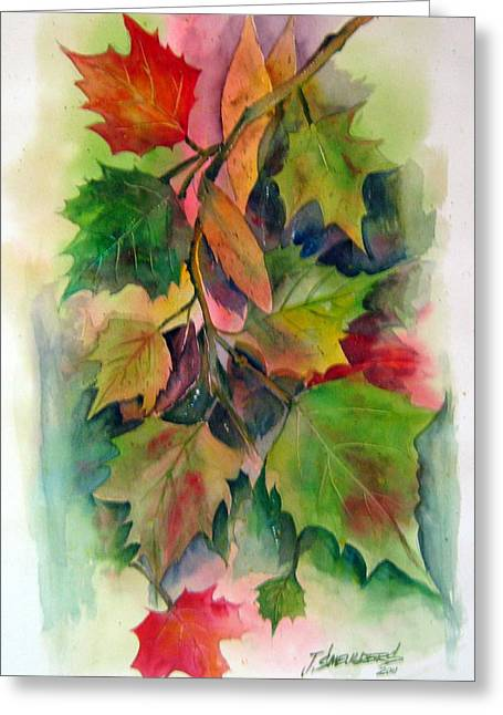 Fall Colors Greeting Card by John Smeulders